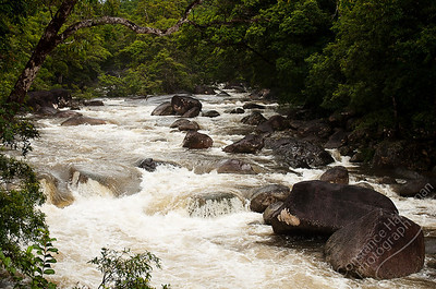 Daintree National Park - Mossman River