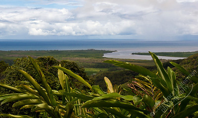 North Queensland - mouth of the Daintree River